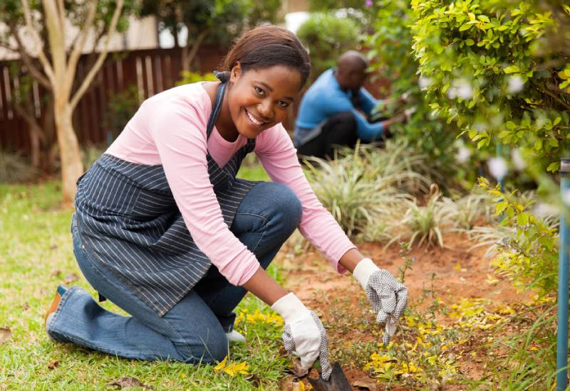 Five do's and don'ts of gardening