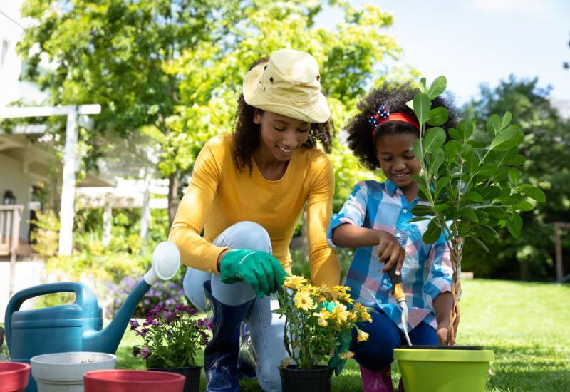 Five tips on how to keep your garden healthy