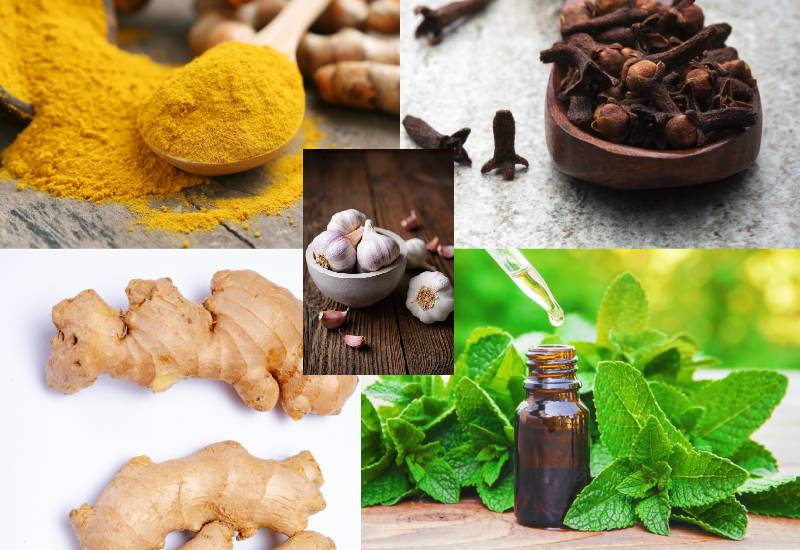 Natural pain relievers in your kitchen