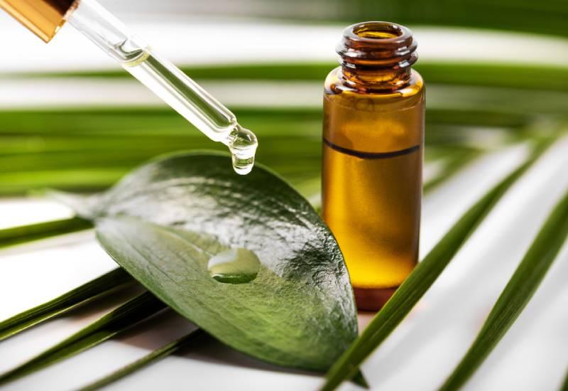 The beauty benefits of tea tree oil