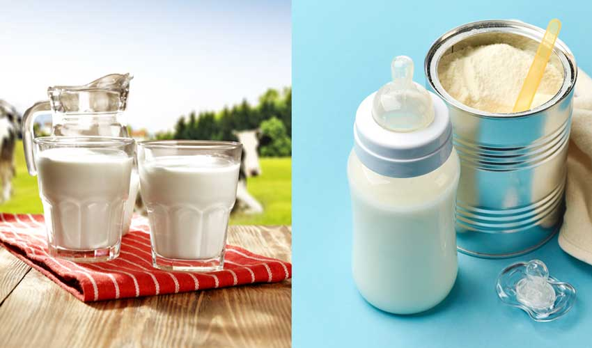 How cow milk and baby formula may lead to obesity - Eve Woman