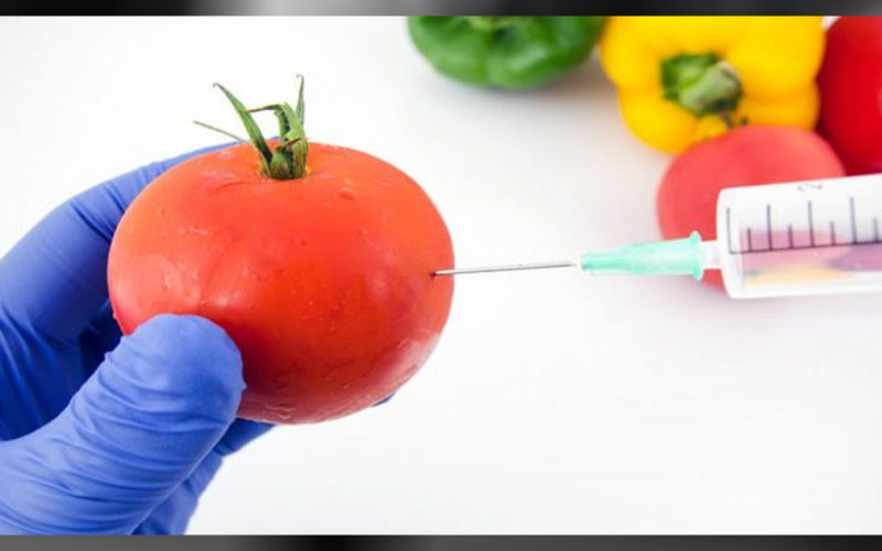 GMO foods: What you don't know about generic engineering in food