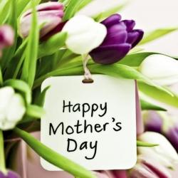 Dear Mother, may I?