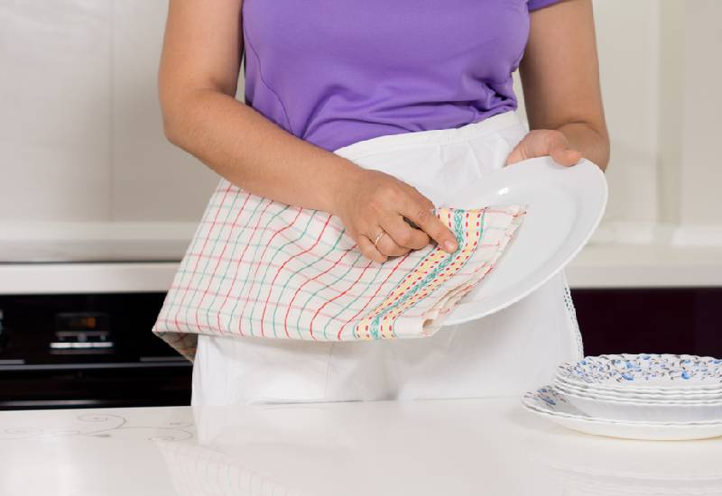 Your dish towels are full of bacteria