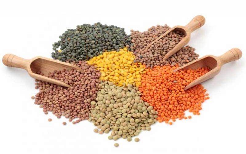 Ingredient of the week: Lentils