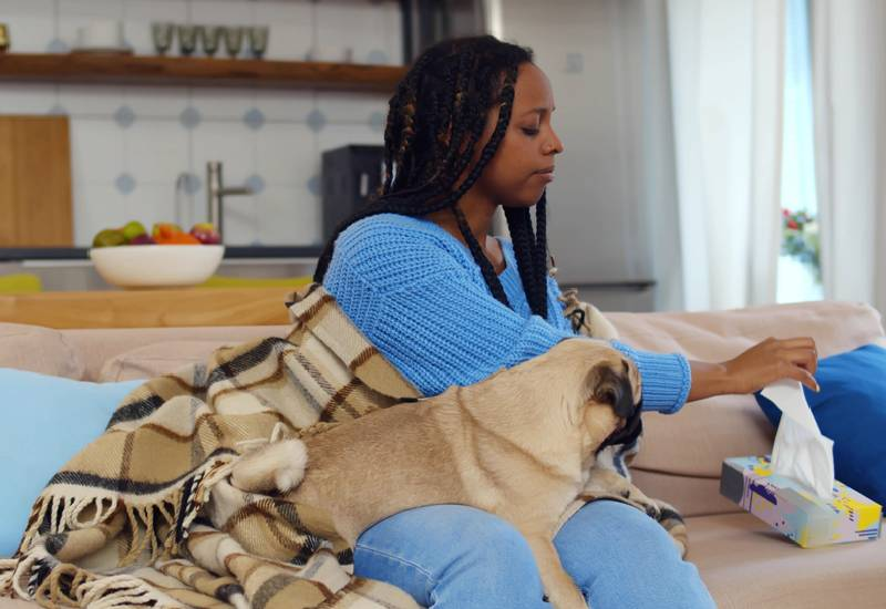 Five tips on how to live with a pet in a small space