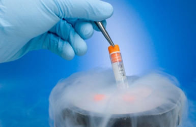 Freezing sperms and eggs for future use