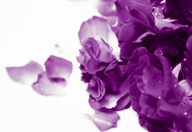 #PurpleDay: Epilepsy safety tips on COVID-19