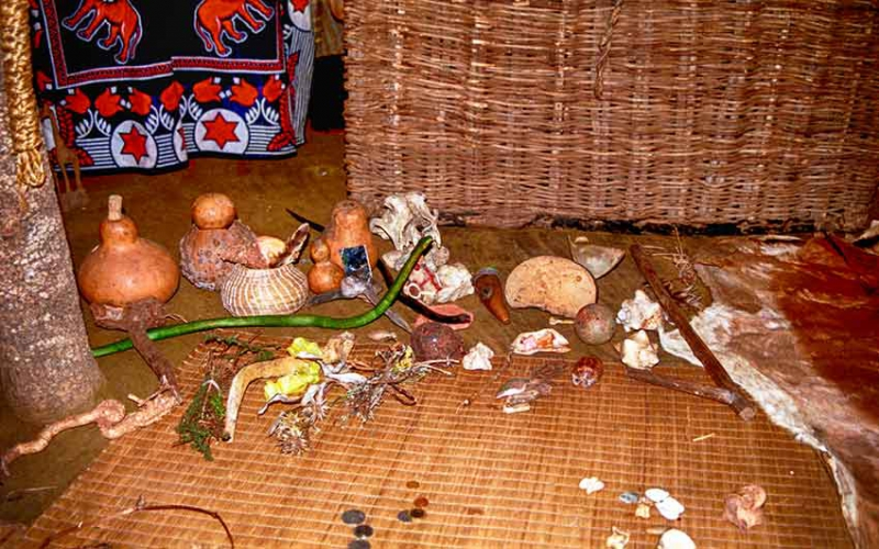 Epilepsy awareness: The role of traditional healers in epilepsy care