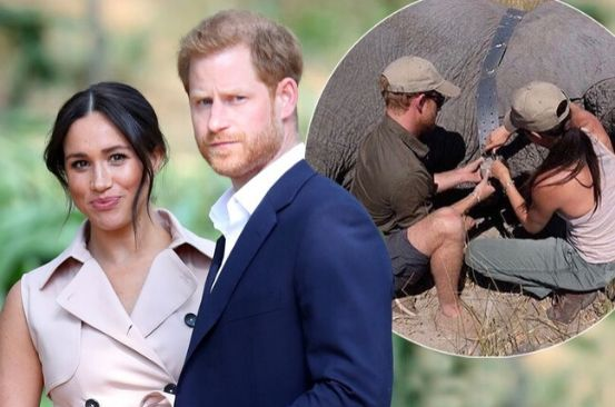 Meghan Markle 'recreated romantic Botswana date for Harry with tents in their garden'