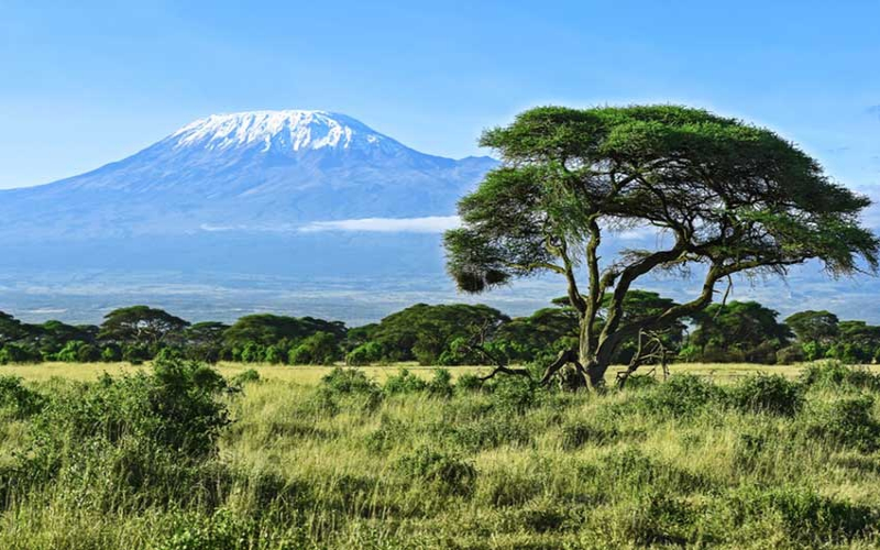 Seven interesting facts about Mount Kilimanjaro
