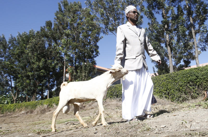 Ibrahim Nurow taking his goat for slaughter after buying it from a seller in Nakuru town to celebrate Idd Ul Adha. (Photo: Kipsang Joseph)