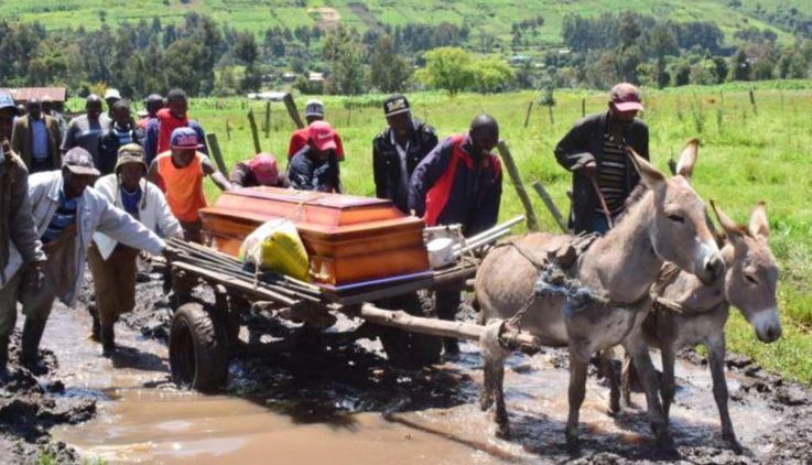 Communities where donkeys are revered