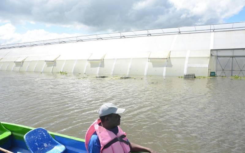 Dutch govt to fund impact study on Sh35b Malewa dam