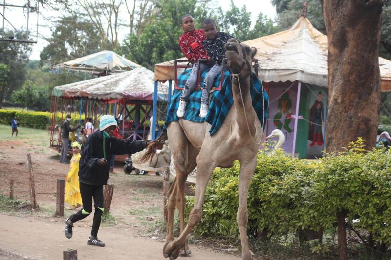 Young Muslim faithful riding a camel at Uhuru Park during Idd-Ul-Adha celebrations in Nairobi. (Photo: Wilberforce Okwiri)