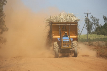 Job cuts loom at Mumias Sugar as second bailout package is received