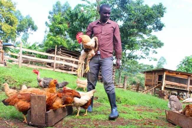 Lessons from farming ventures started with less than Sh10,000