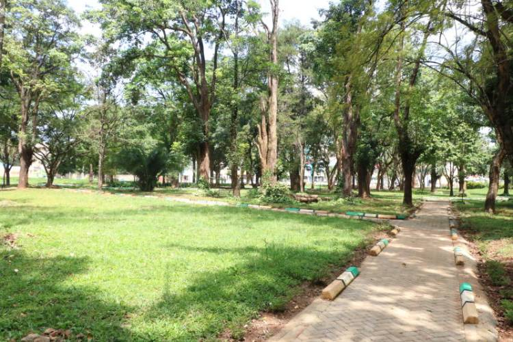 Muliro Gardens: From sex den to family park