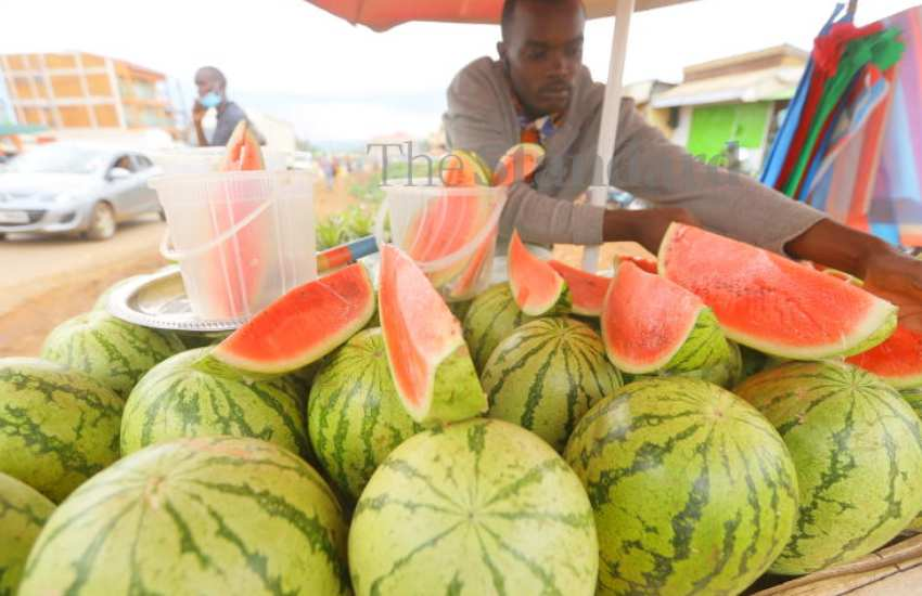 New online market to boost small holder farmers in EAC