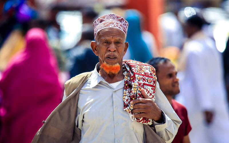 Observers laud Somaliland elections