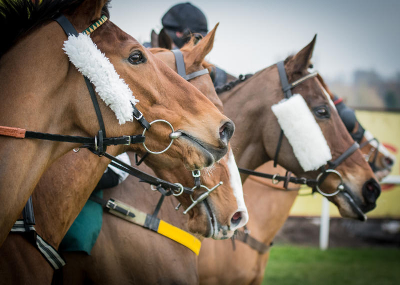 Polo: Nightmares overcome Cruise Control to progress to knockout stage