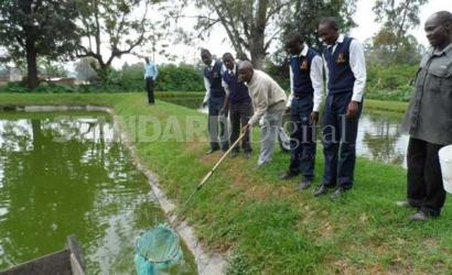 Ponds spark pupils' interest in agriculture