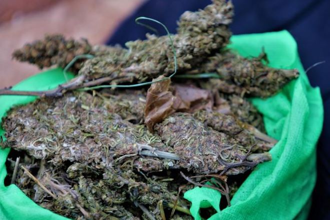 The politics of weed ablaze on 4/20