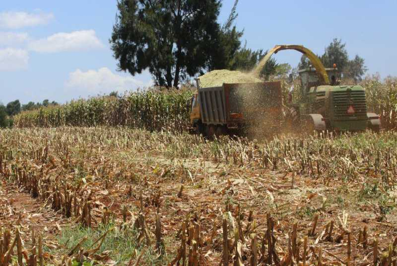 Equip farmers with information to step up food security