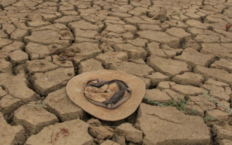 Escalating hunger in Africa calls for more global efforts on food security