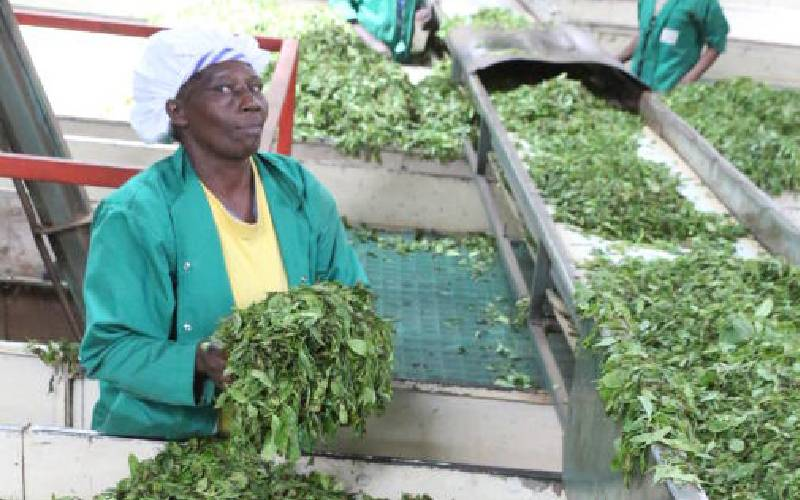Agency says farmers will lose benefits of economies of scale