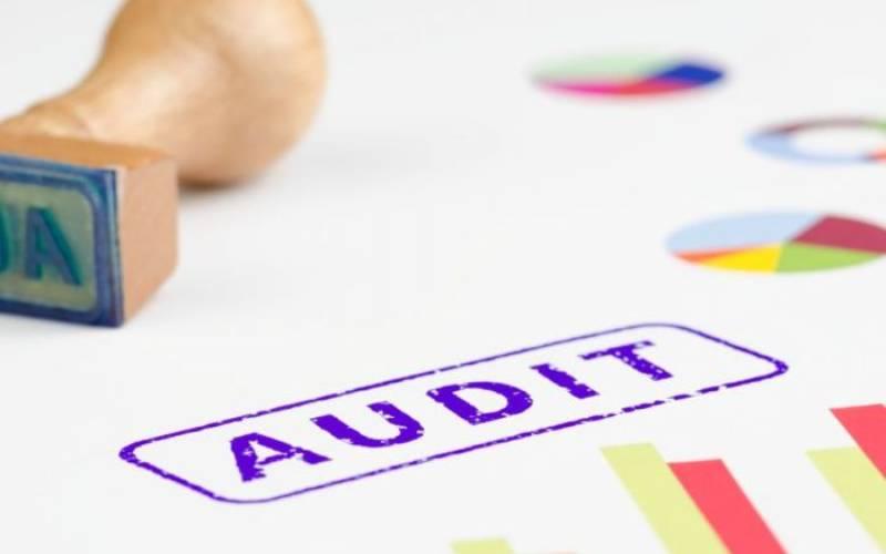 Audit details irregular spending in Affirmative Action Fund