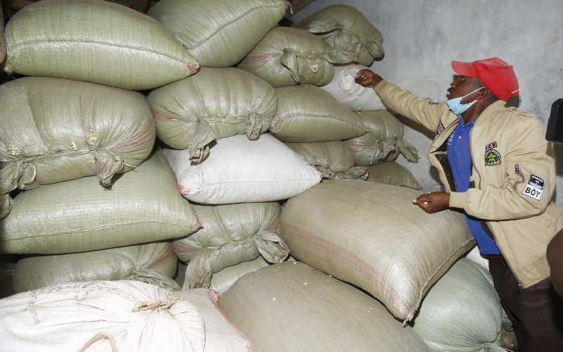 Farmers oppose move to import maize