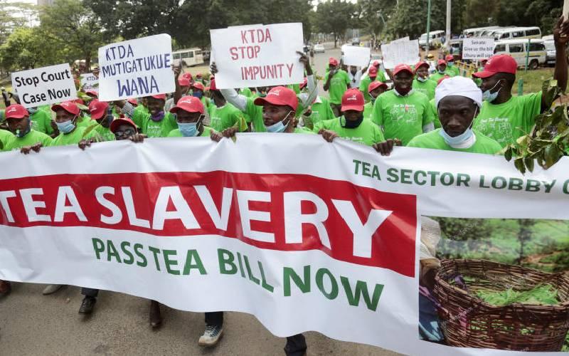 Firms win first battle against new tea levies