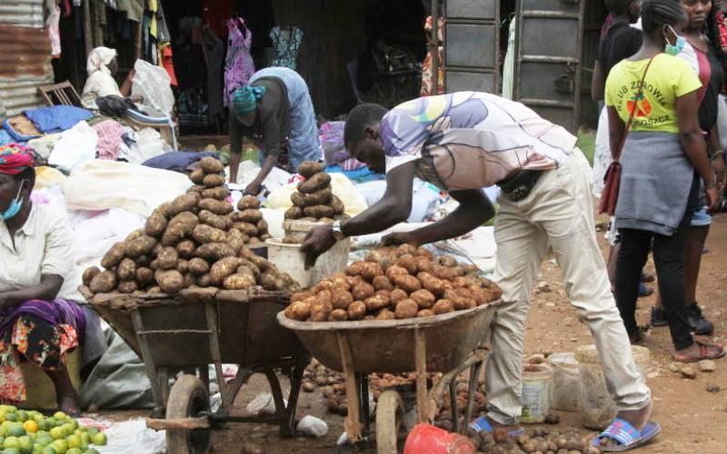KALRO produces potato varieties with longer shelf life