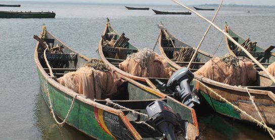 MCA attempts to establish fish factory in Migori County