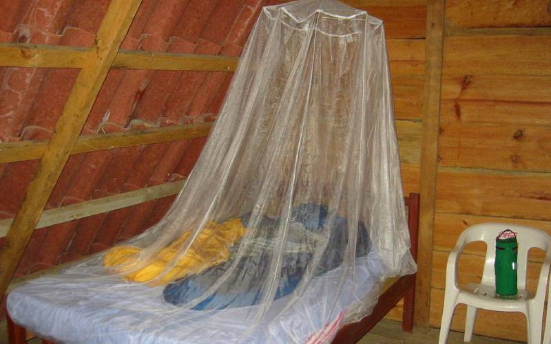 Ministry launches Sh8b plan to distribute mosquito nets