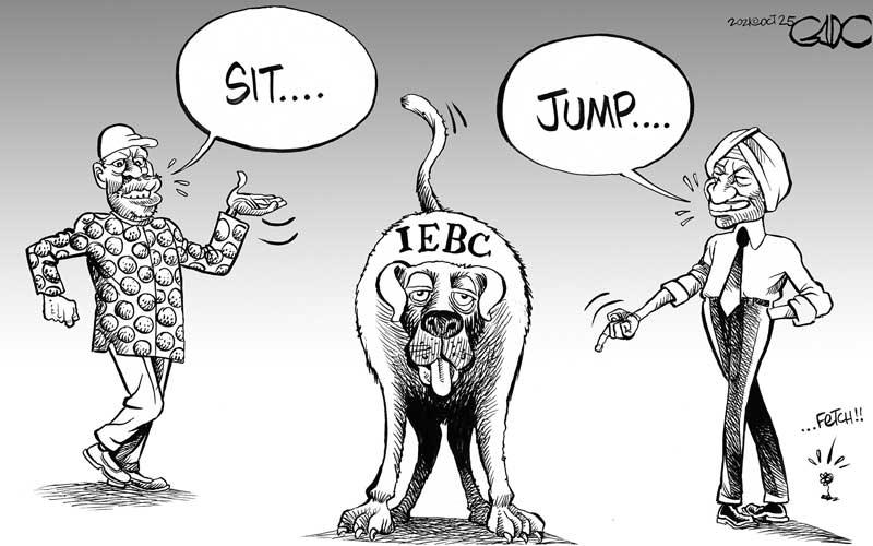 Poor IEBC!