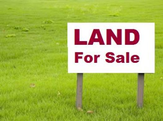 Seven ways of owning land in Kenya