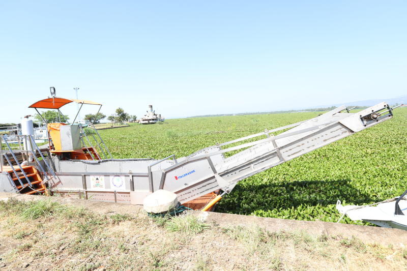 Water hyacinth spread, Sh81 million weed harvester idle
