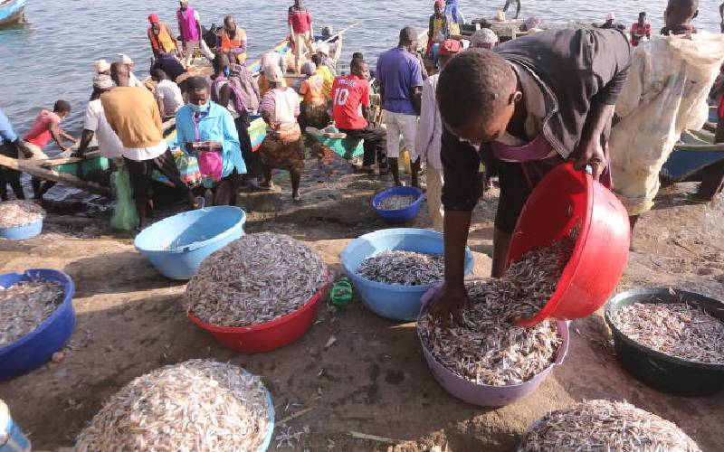 Wave of neglect sweeps over the beaches of Lake Victoria