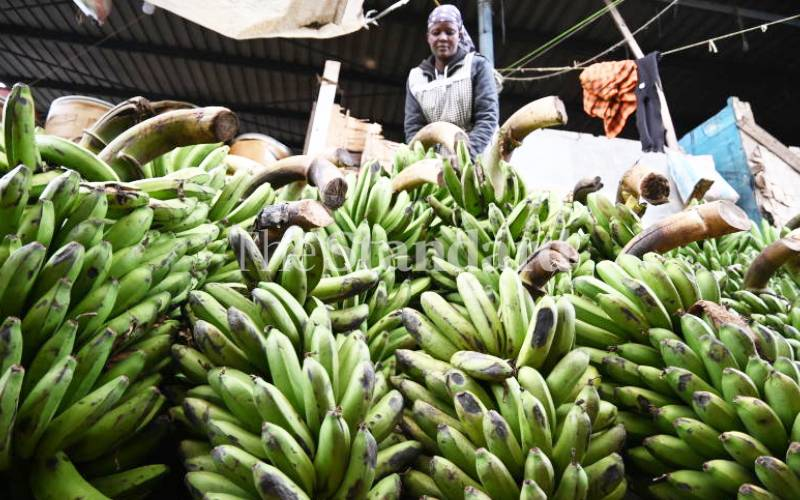 What you need to export bananas and broccoli to South Korea