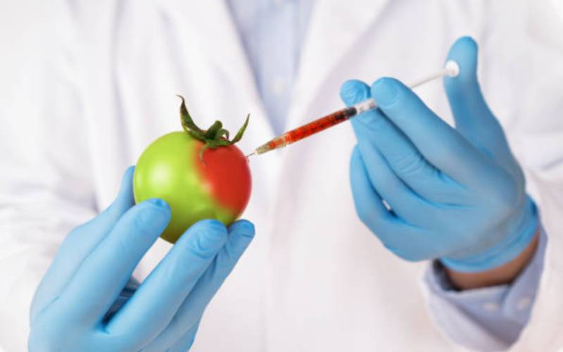 Could gene editing be the solution to food shortage?