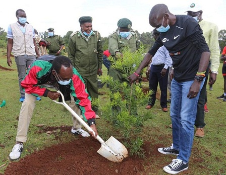 Environment: Kipchoge launches sub-two minutes tree planting challenge