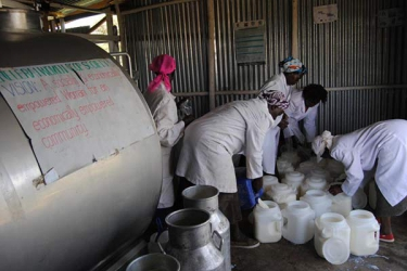 Farmers decry poor milk prices, delayed payments