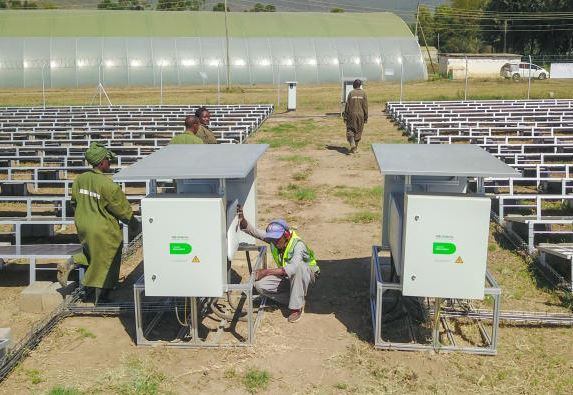 Farms switch to solar as electricity prices soar
