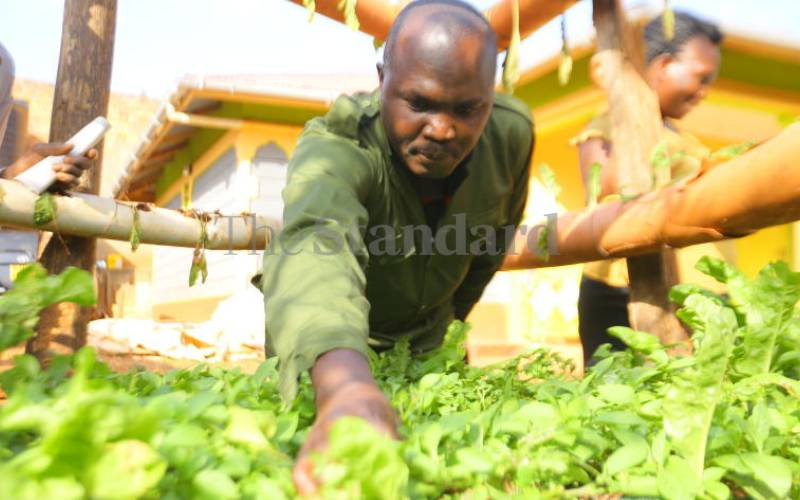 Help farmers, but not at the expense of the local economy