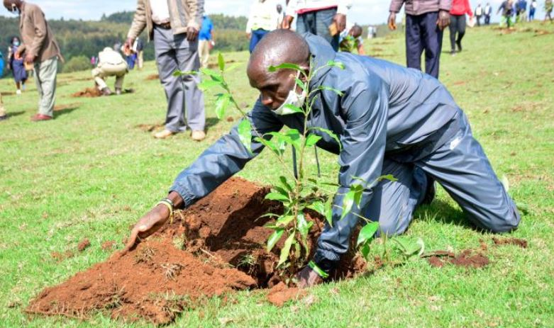 Kipchoge adopts 50 hectares in Kaptagat forest