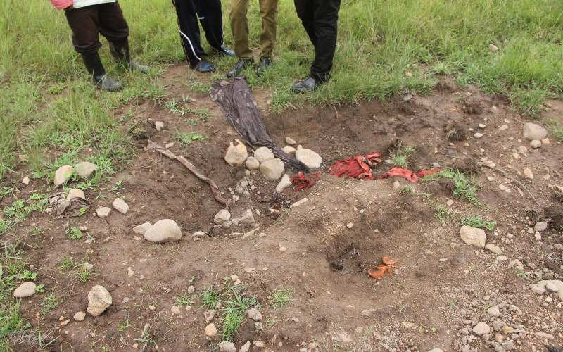 Migori residents concerned over howling hyenas, stench of dead bodies