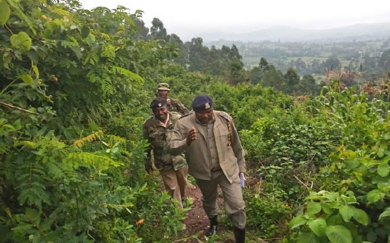 One killed, five injured in tribal clashes on Nandi-Kakamega border