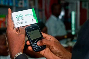 Simple SMS technology saves Eldoret farmers from buying fake inputs